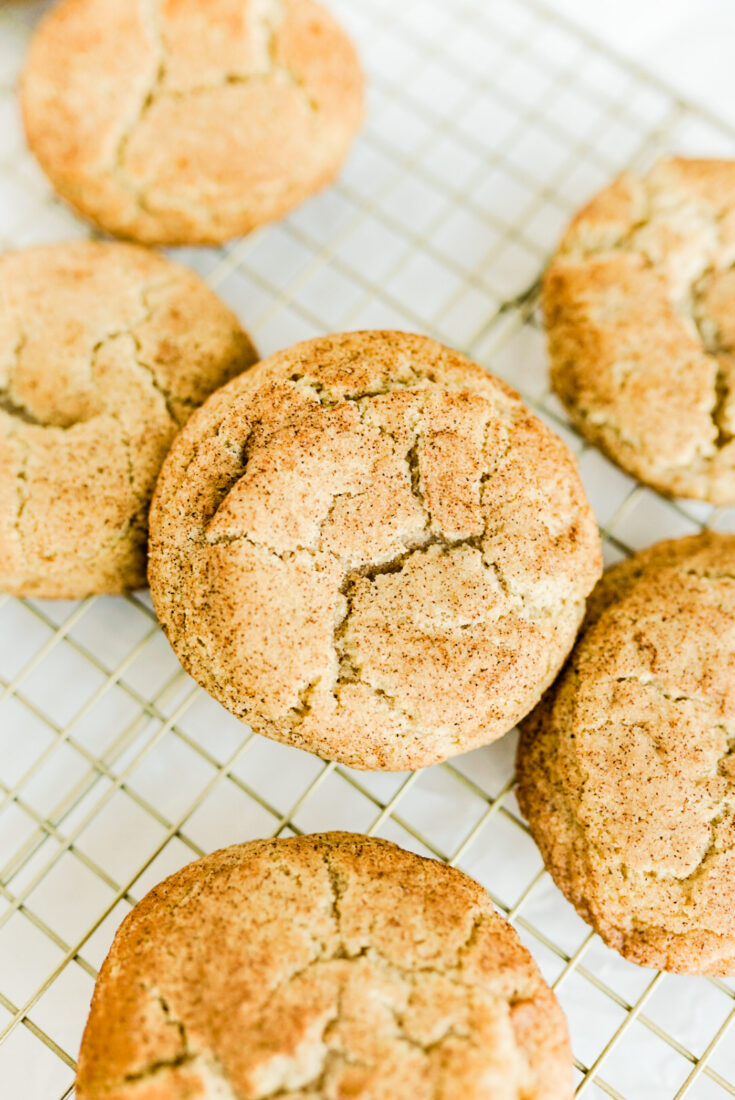 easy-spiced-snickerdoodles