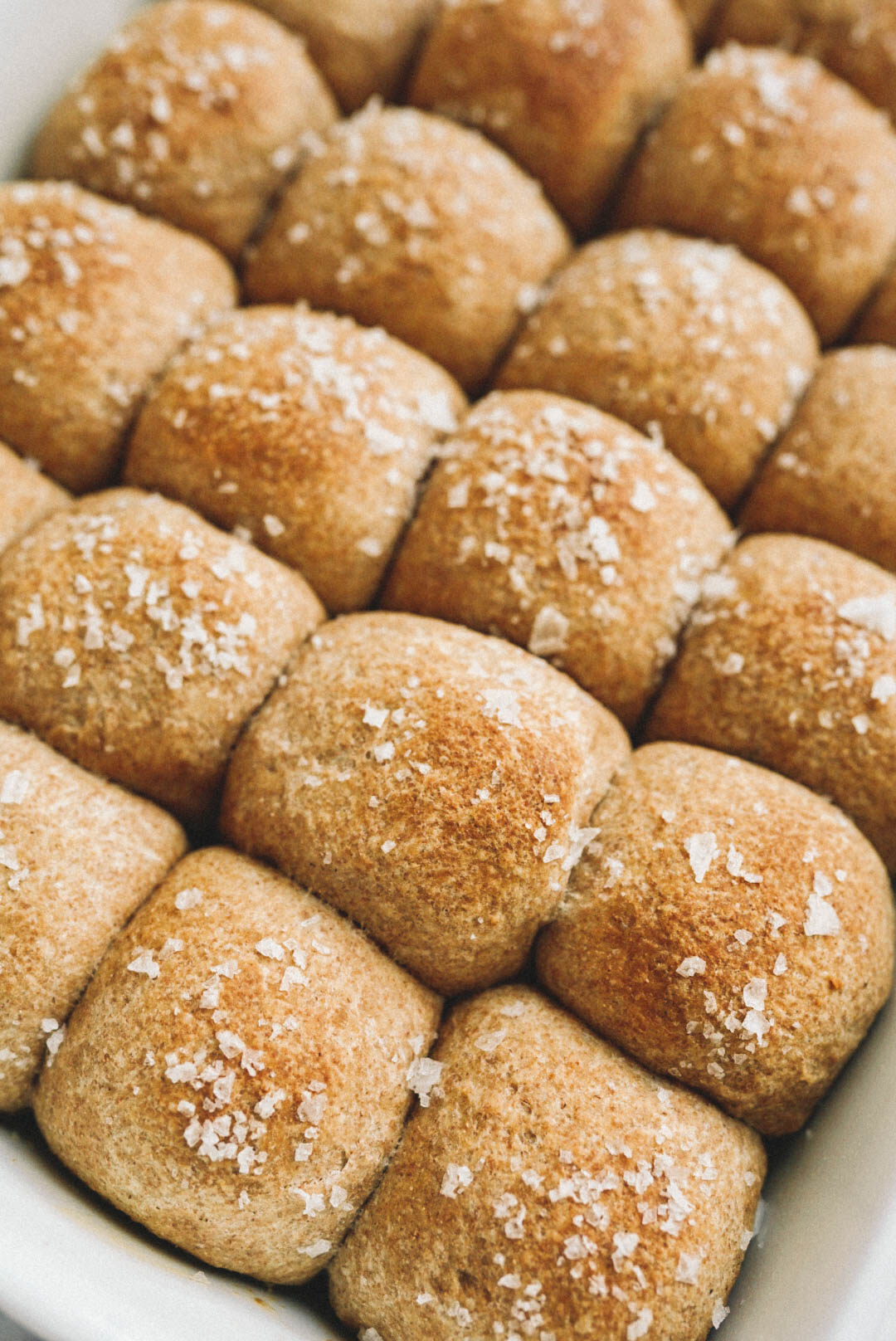 soft whole wheat dinner rolls in white baking dish