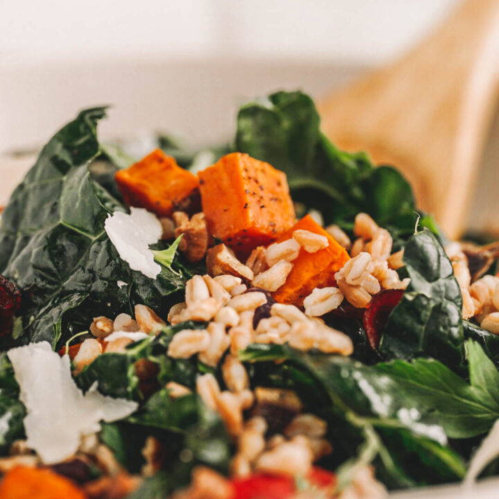 farro salad with kale, sweet potatoes, apples, and dried cranberries